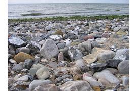 Steine am Strand - Archäologische Sprechstunde zeiTTor