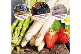 Möbel Kraft Bauern- und Regionalmarkt