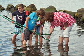 Ostsee entdecken © BUND-Umwelthaus Neustädter Bucht