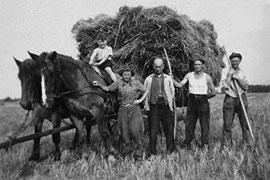 G. Küntzel auf dem Pferd 1950 © privat