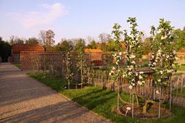Kesselbäume im Frühjahr © Schloss Eutin