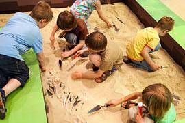 d02adb56b7a5b Kinderworkshops Schatzsuche im Boden – Wissenschaftliche Ausgrabung für  Kleine Forscherinnen und Forscher