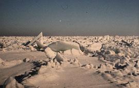 Eisschollen auf der Ostsee bei Schönberg © Henning Tiessen