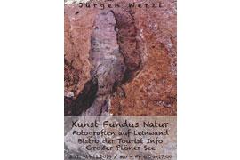 Jürgen Werzl – Ausstellung Kunst-Fundus Natur – Plön