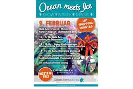 Plakat OCEAN MEETS ICE
