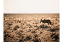 Auf der Suche nach Wasser - Fotografien von Yusuf Bozkurt und Jan-Erik Saß