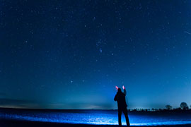 Sternen-Spaziergang in der Lübecker Bucht © Sterne für alle