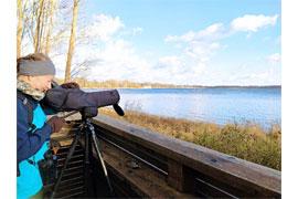 Vogelbestimmung auf einer Aussichtsplattform im NSG © LPV