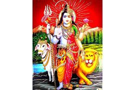 Hijra - zweigeschlechtliche Gottheit - Indien © die LÜBECKER MUSEEN